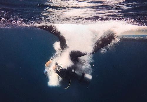 Advance Diver + Four Specialties
